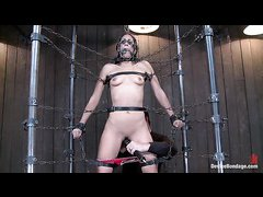 Chains and straps completely immobilize the sexy Lyla Storm