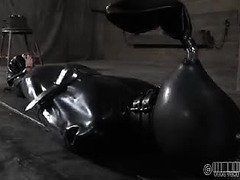 Lovely latex pet is screaming with delight from her raunchy punishment