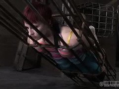 Redhead beauty loves getting confined in a cage and spanked for her lusty sins