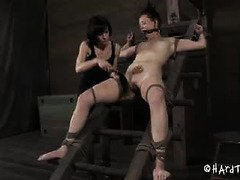 Lusty punishment from sexy mistress gives worthless slave tremendous pleasure