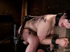 Seeing babe welting in pain while begging for pleasures pleased horny masters
