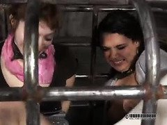 Spitting and suspended beating punishment for naughty slave brunette