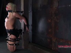 Wanton blonde suffers from master's carnal and tenacious bondage punishment