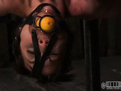 Wanton brunette slave keeps thanking her members for their lewd torture