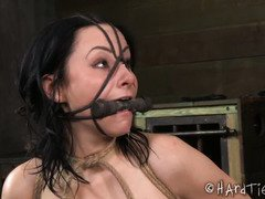 Alluring slut is picking up magnets with her clamped tits during bondage punishment