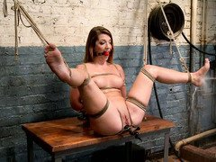 Bounded brunette is screaming with delight during her untamed pussy tormenting