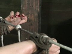 Sizzling hot bounded beauties are experiencing rough fucking with asphyxia
