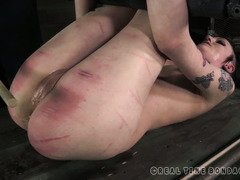 Suspended punk beauty receives a wicked caning session for her bruised bottoms
