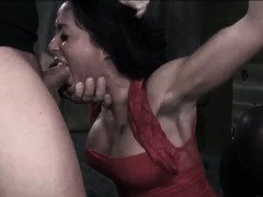 Hot collection of stunning beauties being pushed to the extreme during bondage sex