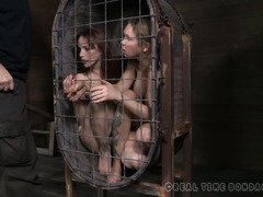 Two smoking hot sluts are punished inside a small and restricted cage