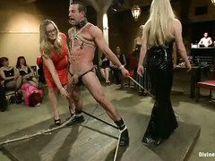 Three submissive male slaves received harsh punishment from several mistresses