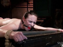 Alluring brunette is totally sated from master's relentless bondage punishment