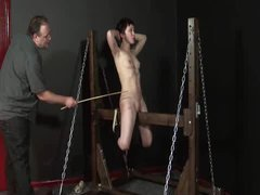 A shorthaired slave takes intense caning and whipping