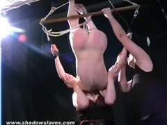 A kinky redhead gets caned in an inescapable suspension