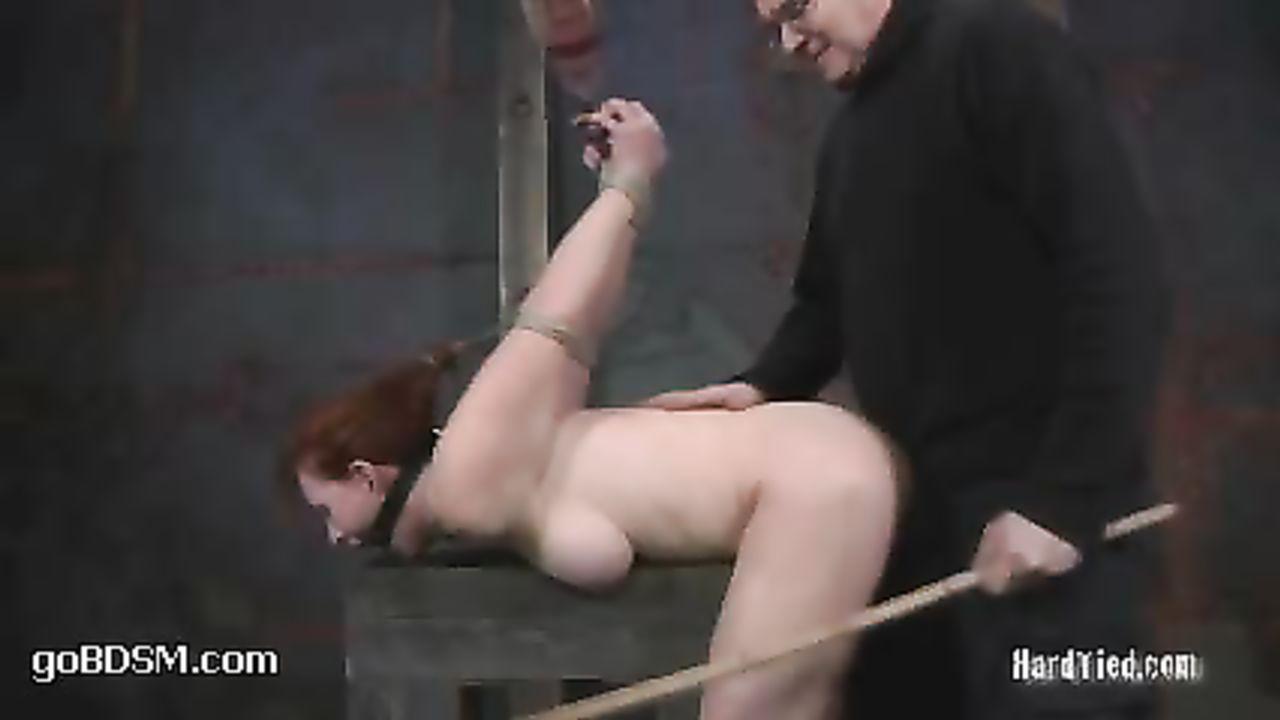 Naked fiona and shrek sex