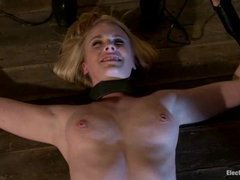 A lovely blonde gets her pussy and tits caressed with the violet wand