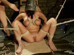 A luxurious hottie covered with hot wax and strap-on fucked