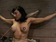 A big titted MILF gets restrained and tormented on the sybian