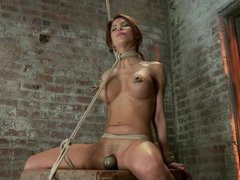 An insanely hot pornstar gets tortured while her clit is vibrated fiercely