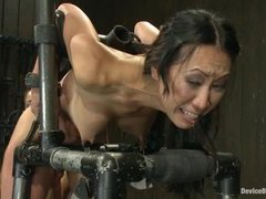Tia Ling screams and drools while her pussy gets pounded and vibrated