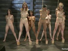 Seven kinky girls arrive to the dungeon for slave training