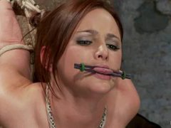 A young brunette takes rough flogging and vibrating in a strappado
