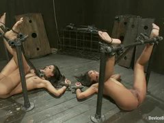 Two sexy sluts restrained by hard metal and made to cum unstoppably