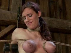 Three gorgeous pain sluts endure intense scene with brutal tying and caning