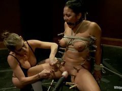A cute college girl gets mummified and tormented by her professor's wife