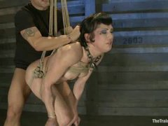 A raunchy slave trainee begs for a cock and gets fucked in suspension