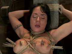a beautiful Hawaiian babe with gorgeous tits is brutally tied up and made to cum