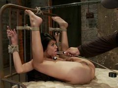 A gorgeous latina girl is orgasmed into subscpace