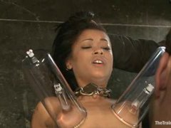 Skin Diamond in a training section with sucking dick and fucking