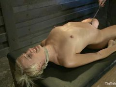 A sexy blonde returns to start over the slave training program