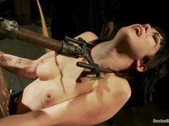 An insanely sexy brunette presents her body for punishment