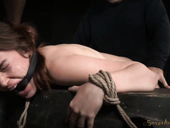Rough and merciless doggstyle drilling for bounded and gagged brunette