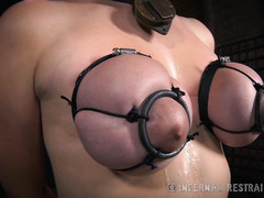 Subject 146 receives harsh tits canings and extreme beatings for her curvy bottoms