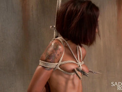 Rough caning, cropping and flogging for captivating ebony sweetheart