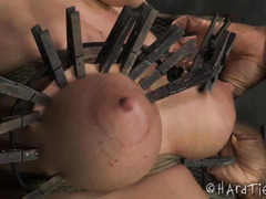 Painful clothespins, caning, whipping and cropping torture for blonde's big boobs