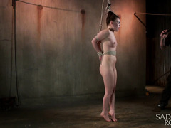 Tied up petite brunette enjoys rough flogging from master for her luscious pussy