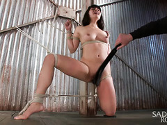 Gorgeous Asian could only tremble and moan from master's wicked beaver punishment